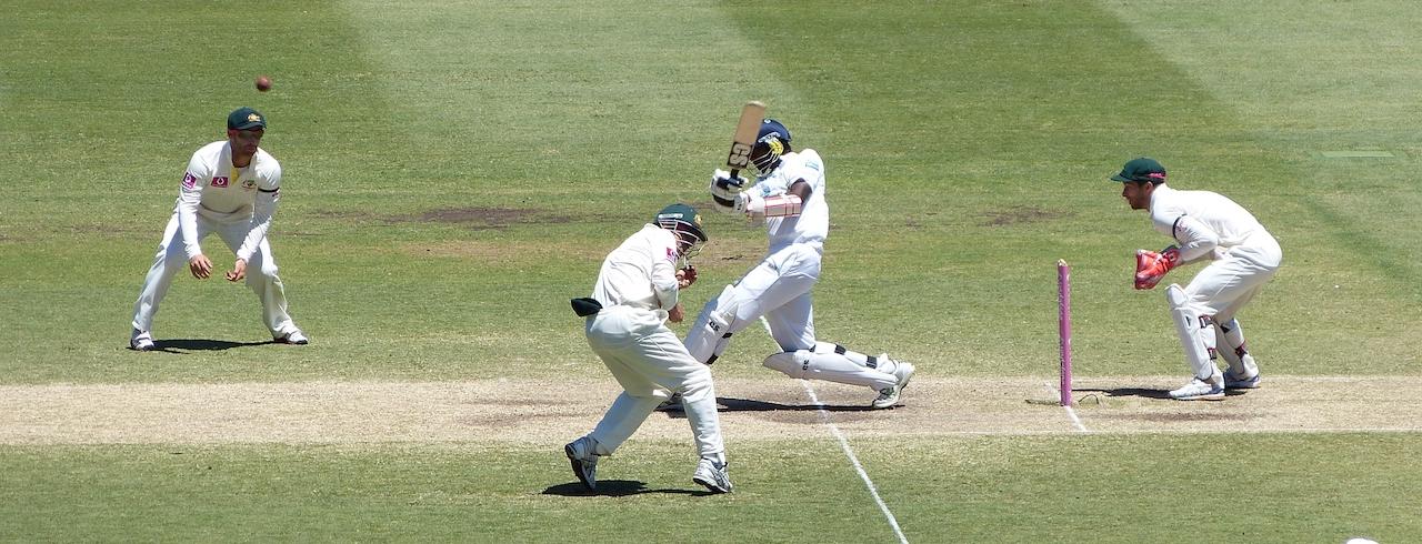 Cricket game 1